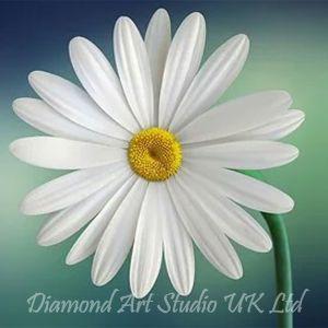 Daisy Sample Image