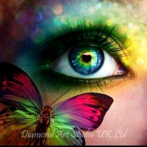 Butterfly Eye Image