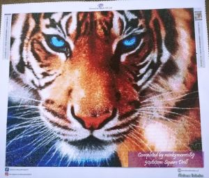 Completed Tiger 5060S