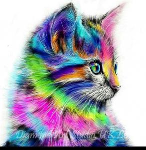 Rainbow Cat Image