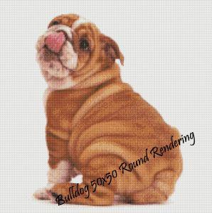 Bulldog Round Rendering