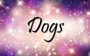 Dogs Title