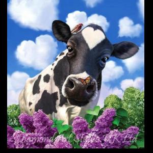 Love Cow Image