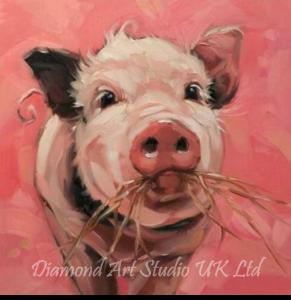 Pink Piggy Image
