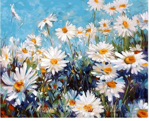 Daisy Fields Image
