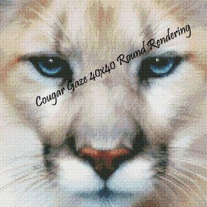 Cougar Gaze Round Rendering