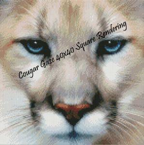 Cougar Gaze Square Rendering