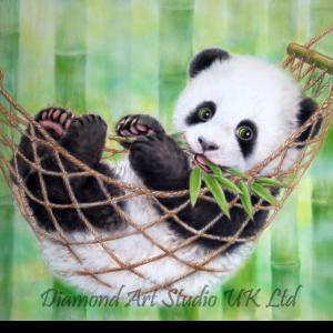 Lazy Panda Image