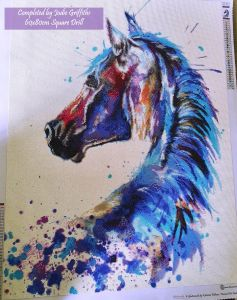 Completed Horse 6080S