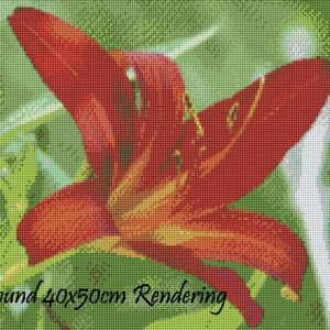 Red Lily Round Rendering